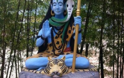 Abuse of Power and the neo-Tantric Community
